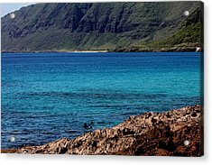 Relaxing On Oahu Acrylic Print by Elizabeth  Doran