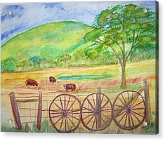 The Cattle Gap Acrylic Print by Belinda Lawson