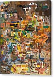 The Essense Of Each Matter Acrylic Print by David Baruch Wolk