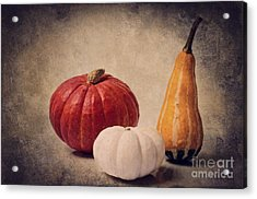 Three Pumpkins Acrylic Print by Angela Doelling AD DESIGN Photo and PhotoArt