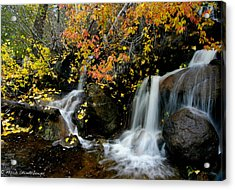 Acrylic Print featuring the photograph  Waterfall by Mitch Shindelbower