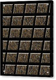 0577 Abstract Thought Acrylic Print by Chowdary V Arikatla