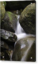 0706-0138 Smith Creek Rocks Acrylic Print by Randy Forrester