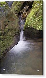 0706-0170 Smith Creek Cascade Acrylic Print by Randy Forrester