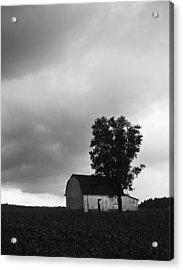 081412-107 Acrylic Print by Mike Davis