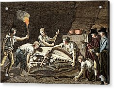 1770 Maastricht Mosasaur Acrylic Print