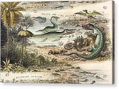 1849 The Antidiluvian World Crop Jurassic Acrylic Print by Paul D Stewart