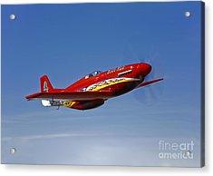 A Dago Red P-51g Mustang In Flight Acrylic Print by Scott Germain