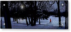 A Walk In The Snow Acrylic Print by Jim Wright
