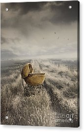 Abandoned Antique Baby Carriage In Field Acrylic Print by Sandra Cunningham