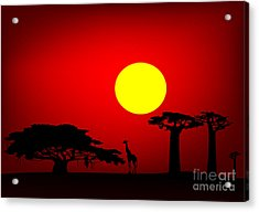 Africa Sunset Acrylic Print by Michal Boubin