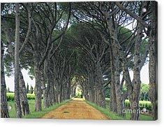 Alley . Provence Acrylic Print by Bernard Jaubert
