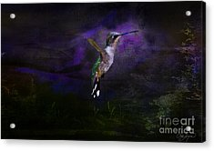 Angel Acrylic Print by Cris Hayes