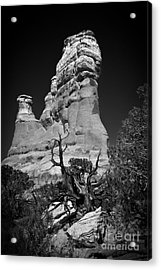 Arches National Park Bw Acrylic Print by Larry Carr