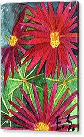 Arizona Pincushion Acrylic Print