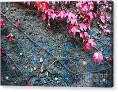 Autumn 14 Acrylic Print by Elena Mussi