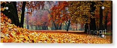 Autumn In The Woodland Acrylic Print by Hannes Cmarits