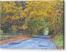 Autumn Road Acrylic Print