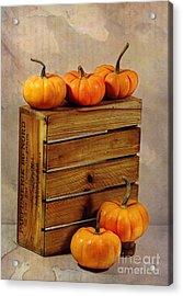 Autumn Still Life Acrylic Print by Judi Bagwell