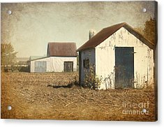 Barns Acrylic Print by Sophie Vigneault