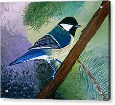 Blue Chickadee Acrylic Print by Angela Gale