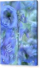 Blue Delphinium Acrylic Print by Bonnie Bruno