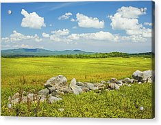Blue Sky And Clouds Over Maine Blueberry Field Acrylic Print by Keith Webber Jr