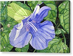 Acrylic Print featuring the painting Blue Sky Vine by Debi Singer