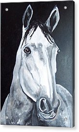 Boccachino Acrylic Print by Krista Ouellette