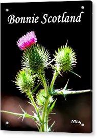 Bonnie Scotland Acrylic Print