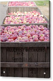 Acrylic Print featuring the photograph Bountiful by Linda Mishler