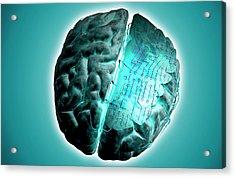 Brain With Circuit Board Acrylic Print by MedicalRF.com