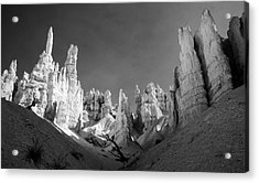 Acrylic Print featuring the photograph Bryce Canyon Infrared by Mike Irwin