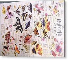 Butterfly Garden Acrylic Print