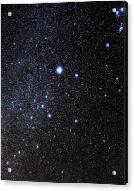 Canis Major Constellation Acrylic Print by Eckhard Slawik