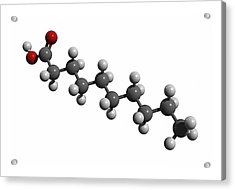 Capric Acid Molecule Acrylic Print by Friedrich Saurer