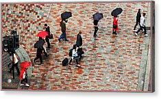 Caught In The Rain Acrylic Print by Barry Hayton