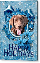 Christmas - Blue Snowflakes Labrador Acrylic Print by Renae Laughner