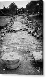 Colonnaded Street In The Ancient Site Of Salamis Famagusta Turkish Republic Of Northern Cyprus Trnc Acrylic Print by Joe Fox