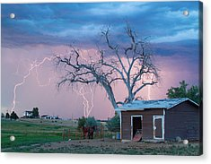 Country Horses Lightning Storm Ne Boulder County Co  76 Acrylic Print by James BO  Insogna