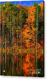 Coxsackie New York State Acrylic Print by Mark Gilman