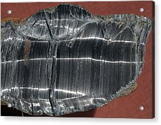 Crocidolite Asbestos Mineral Acrylic Print by Dirk Wiersma