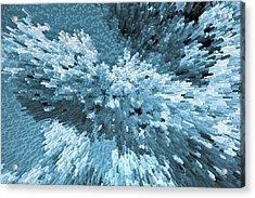 Crystal Flowers Acrylic Print by David Pyatt