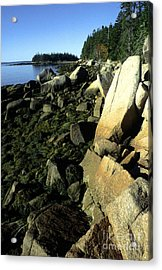 Deer Isle And Barred Island Acrylic Print by Thomas R Fletcher