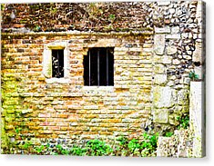 Derelict Building Acrylic Print by Tom Gowanlock