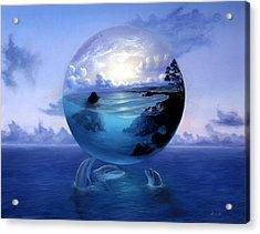 Dolphin Dreams Acrylic Print