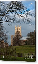 Ely Cathedral  Acrylic Print by Andrew  Michael
