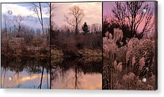 Fading Light Acrylic Print by Christy Woods