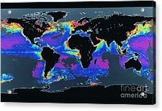 False-col Satellite Image Of Worlds Acrylic Print by Dr. Gene Feldman, NASA Goddard Space Flight Center
