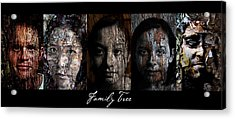 Family Tree Acrylic Print by Christopher Gaston